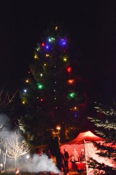 Rozsvícení vánočního stromu - 30.11.2019
