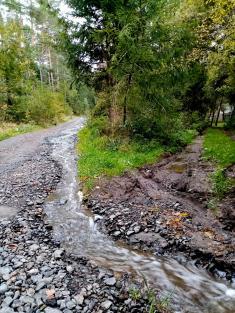 Rozvodněné potoky a potůčky