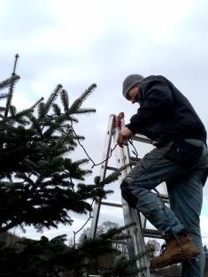Zdobení a rozsvěcení vánočních stromečků